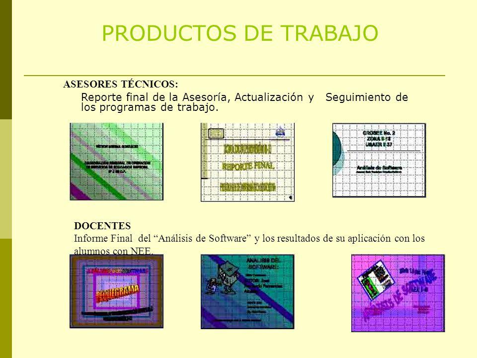 PRODUCTOS DE TRABAJO ASESORES TÉCNICOS: Reporte final de la Asesoría, Actualización y Seguimiento de los programas de trabajo.
