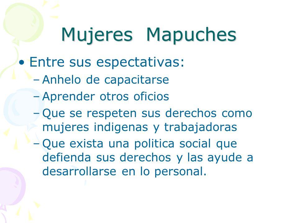 Mujeres Mapuches Entre sus espectativas: –Anhelo de capacitarse –Aprender otros oficios –Que se respeten sus derechos como mujeres indigenas y trabaja