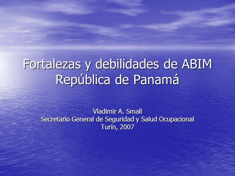 Fortalezas y debilidades de ABIM República de Panamá Vladimir A. Small Secretario General de Seguridad y Salud Ocupacional Turín, 2007