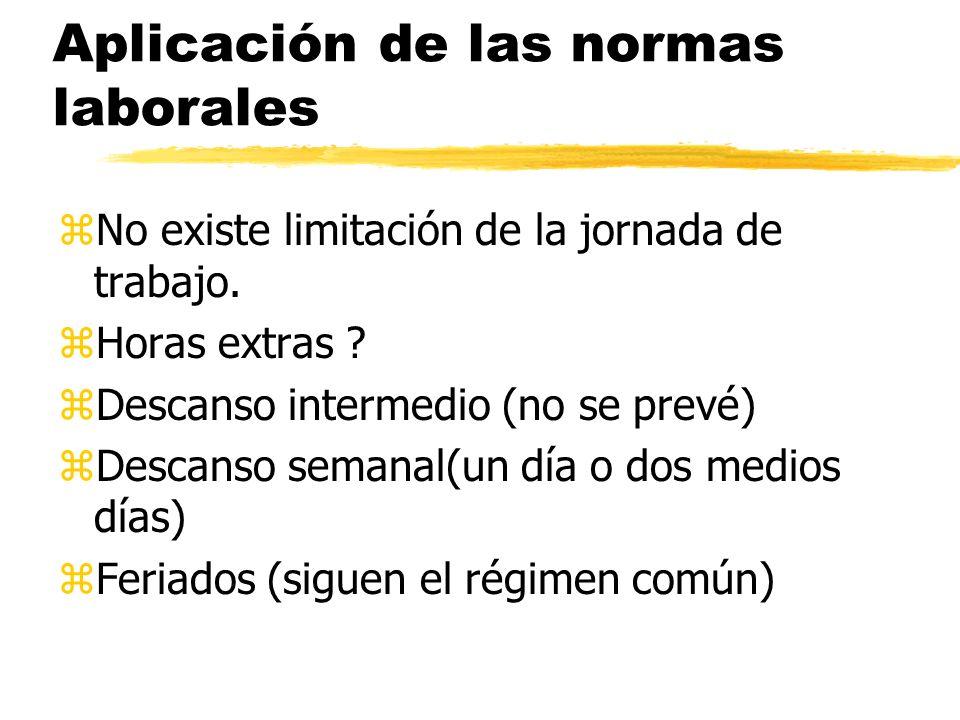 Aplicación de las normas laborales zNo existe limitación de la jornada de trabajo.