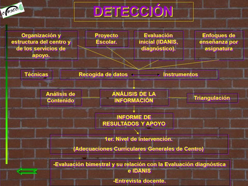 DETERMINACIÓN DETECCIÓN Organización y estructura del centro y de los servicios de apoyo.