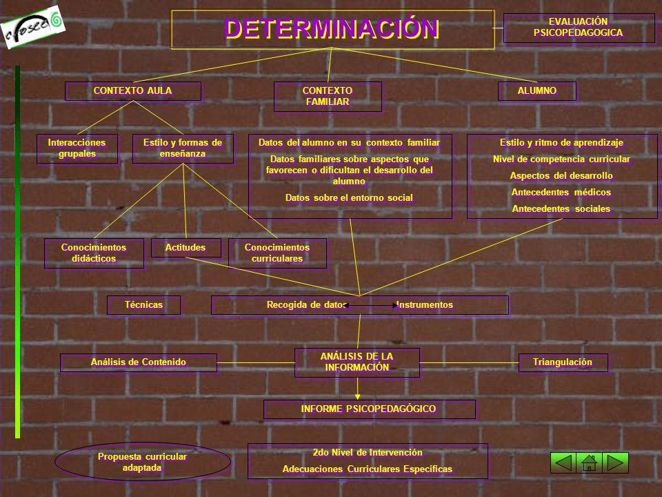 DETECCIÓN Organización y estructura del centro y de los servicios de apoyo.