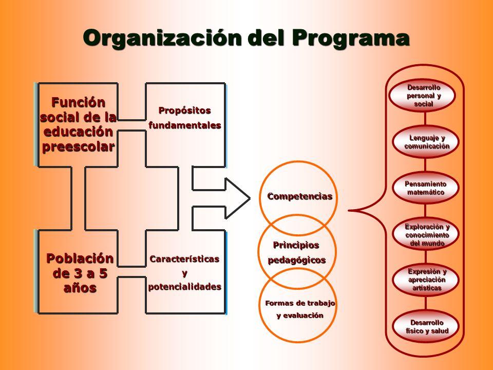 Organización del Programa Función social de la educación preescolar Población de 3 a 5 años Propósitosfundamentales Característicasypotencialidades Co