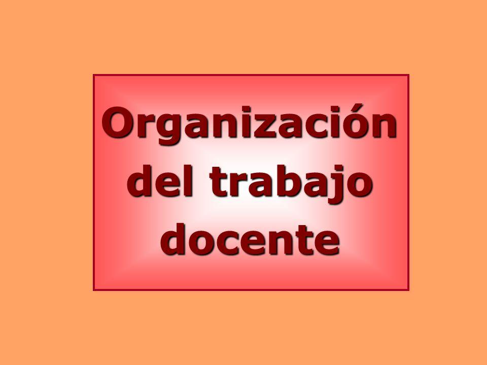 Organización del trabajo docente