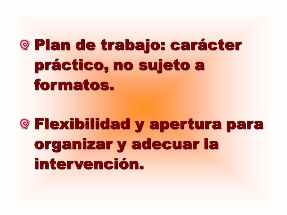 Plan de trabajo: carácter práctico, no sujeto a formatos. Flexibilidad y apertura para organizar y adecuar la intervención.