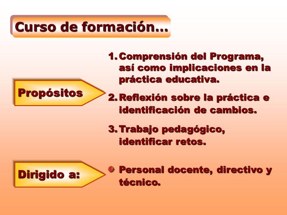 Curso de formación… Propósitos 1.Comprensión del Programa, así como implicaciones en la práctica educativa. 2.Reflexión sobre la práctica e identifica