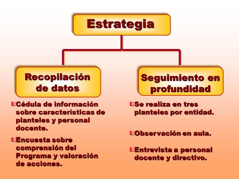 Estrategia Recopilación de datos Seguimiento en profundidad Cédula de información sobre características de planteles y personal docente. Encuesta sobr