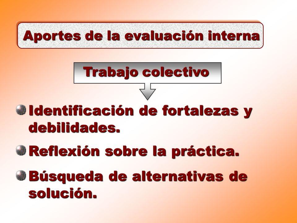 Aportes de la evaluación interna Identificación de fortalezas y debilidades. Reflexión sobre la práctica. Búsqueda de alternativas de solución. Trabaj