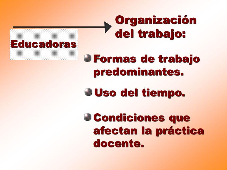 Educadoras Organización del trabajo: Formas de trabajo predominantes. Uso del tiempo. Condiciones que afectan la práctica docente.