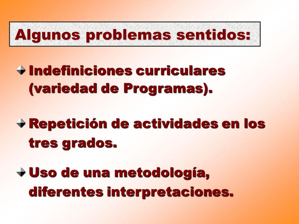 Algunos problemas sentidos: Indefiniciones curriculares (variedad de Programas). Repetición de actividades en los tres grados. Uso de una metodología,
