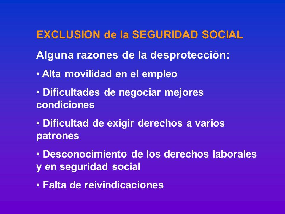 EXCLUSION de la SEGURIDAD SOCIAL Alguna razones de la desprotección: Alta movilidad en el empleo Dificultades de negociar mejores condiciones Dificult