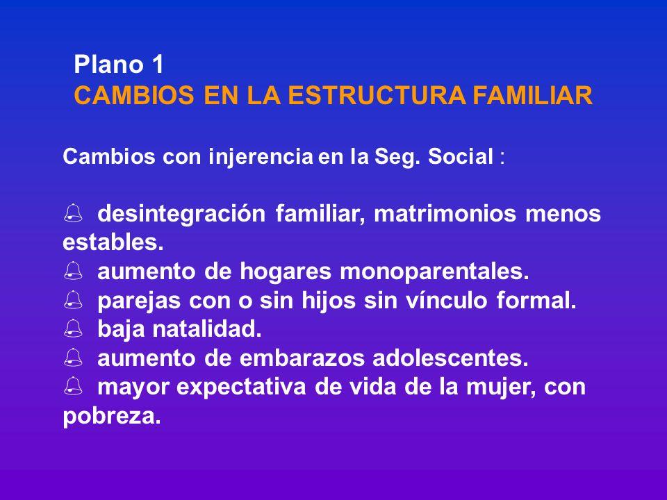 Plano 1 CAMBIOS EN LA ESTRUCTURA FAMILIAR Cambios con injerencia en la Seg. Social : % desintegración familiar, matrimonios menos estables. % aumento
