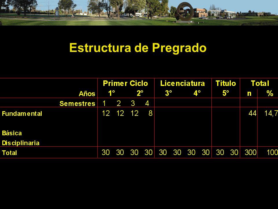 Estructura de Pregrado