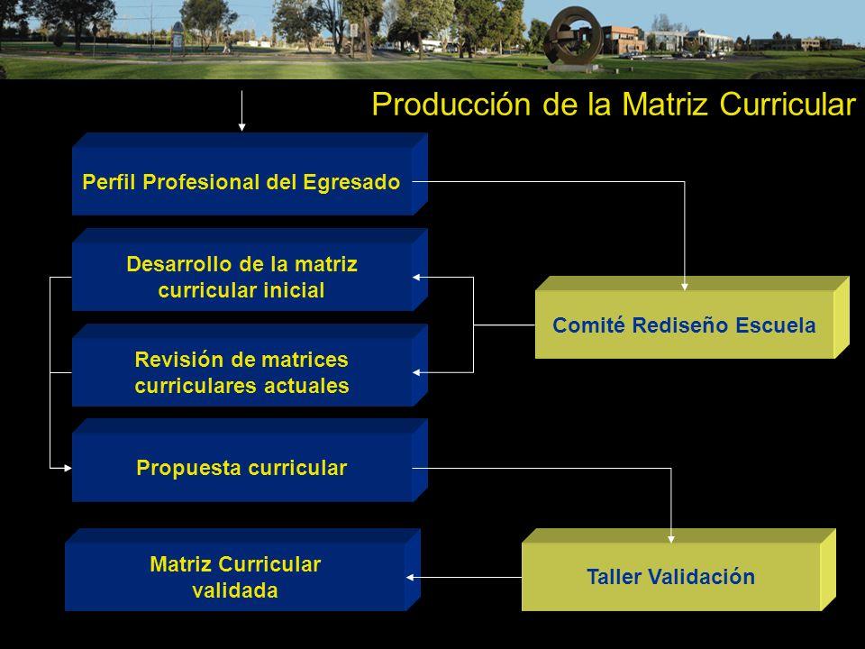 Producción de la Matriz Curricular Perfil Profesional del Egresado Desarrollo de la matriz curricular inicial Matriz Curricular validada Comité Redise
