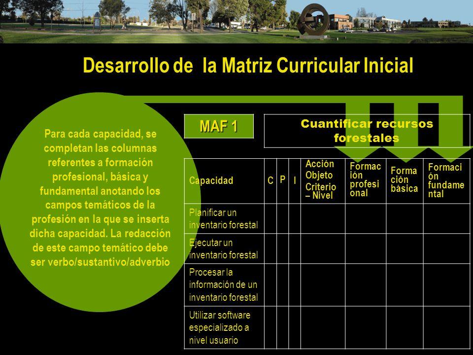 Desarrollo de la Matriz Curricular Inicial Para cada capacidad, se completan las columnas referentes a formación profesional, básica y fundamental ano