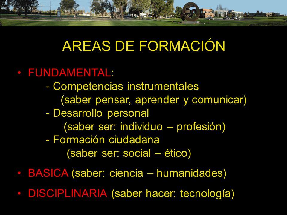 AREAS DE FORMACIÓN FUNDAMENTAL: - Competencias instrumentales (saber pensar, aprender y comunicar) - Desarrollo personal (saber ser: individuo – profe