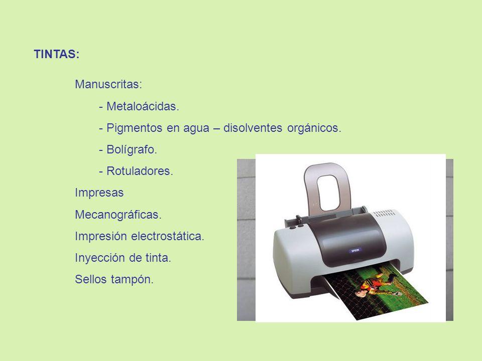 CONOCIMIENTO DEL ESTADO DE LA CUESTIÓN: Estado de Conservación del Depósito / Almacén.