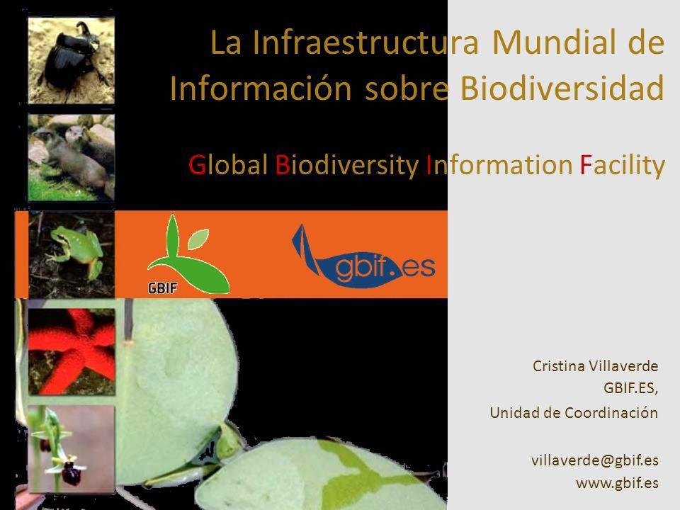 La Infraestructura Mundial de Información sobre Biodiversidad Global Biodiversity Information Facility Cristina Villaverde GBIF.ES, Unidad de Coordinación villaverde@gbif.es www.gbif.es