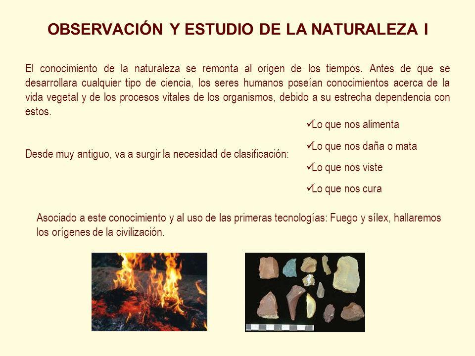 OBSERVACIÓN Y ESTUDIO DE LA NATURALEZA I El conocimiento de la naturaleza se remonta al origen de los tiempos. Antes de que se desarrollara cualquier