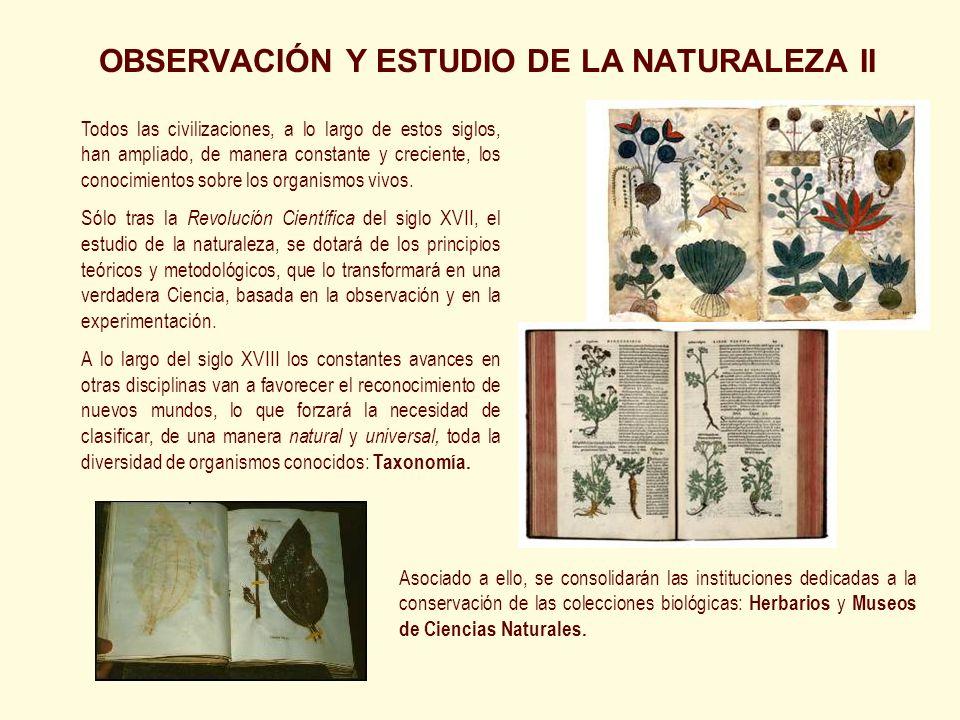 OBSERVACIÓN Y ESTUDIO DE LA NATURALEZA II Todos las civilizaciones, a lo largo de estos siglos, han ampliado, de manera constante y creciente, los con