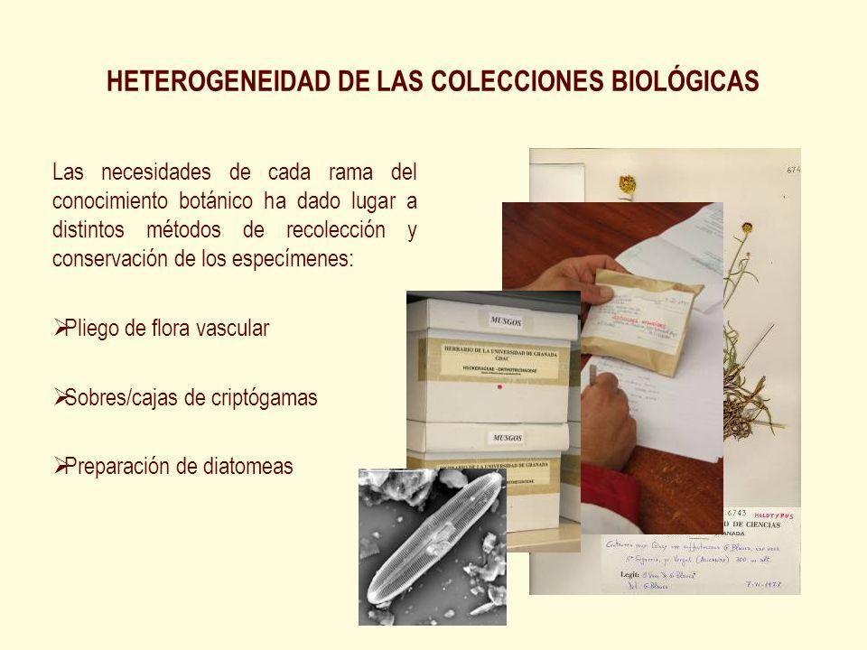 HETEROGENEIDAD DE LAS COLECCIONES BIOLÓGICAS Las necesidades de cada rama del conocimiento botánico ha dado lugar a distintos métodos de recolección y