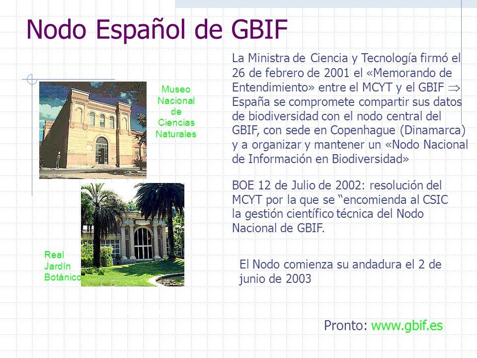 Gobius cruentatus Nodo Español de GBIF Museo Nacional de Ciencias Naturales Real Jardín Botánico Pronto: www.gbif.es BOE 12 de Julio de 2002: resolución del MCYT por la que se encomienda al CSIC la gestión científico técnica del Nodo Nacional de GBIF.