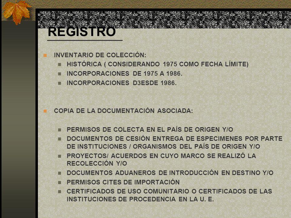 REGISTRO INVENTARIO DE COLECCIÓN: HISTÓRICA ( CONSIDERANDO 1975 COMO FECHA LÍMITE) INCORPORACIONES DE 1975 A 1986. INCORPORACIONES D3ESDE 1986. COPIA