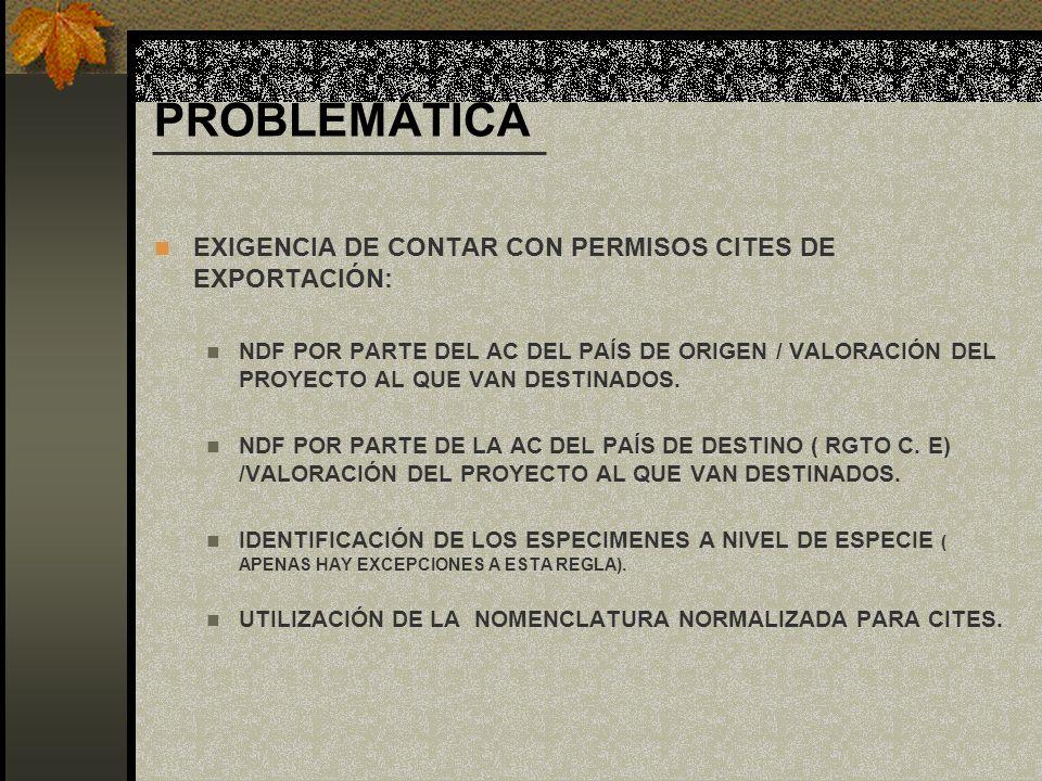 PROBLEMÁTICA EXIGENCIA DE CONTAR CON PERMISOS CITES DE EXPORTACIÓN: NDF POR PARTE DEL AC DEL PAÍS DE ORIGEN / VALORACIÓN DEL PROYECTO AL QUE VAN DESTI