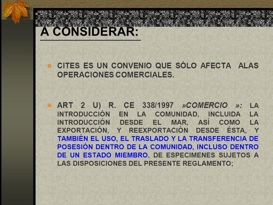 A CONSIDERAR: CITES ES UN CONVENIO QUE SÓLO AFECTA ALAS OPERACIONES COMERCIALES. ART 2 U) R. CE 338/1997 »COMERCIO »: LA INTRODUCCIÓN EN LA COMUNIDAD,