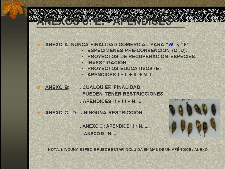 ANEXOS U. E. - APÉNDICES ANEXO A: NUNCA FINALIDAD COMERCIAL PARA W y F ESPECÍMENES PRE-CONVENCIÓN (O,U). PROYECTOS DE RECUPERACIÓN ESPECIES. INVESTIGA