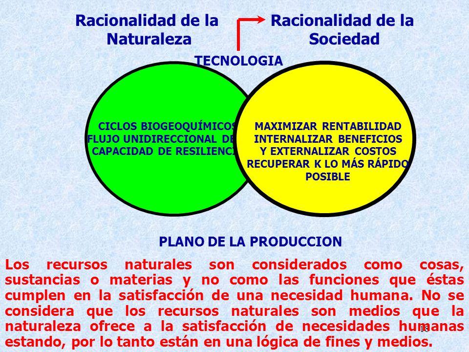 18 Racionalidad de la Naturaleza Racionalidad de la Sociedad PLANO DE LA PRODUCCION CICLOS BIOGEOQUÍMICOS FLUJO UNIDIRECCIONAL DE E. CAPACIDAD DE RESI