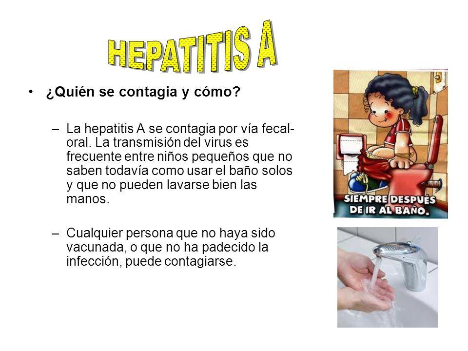 ¿Quién se contagia y cómo? –La hepatitis A se contagia por vía fecal- oral. La transmisión del virus es frecuente entre niños pequeños que no saben to