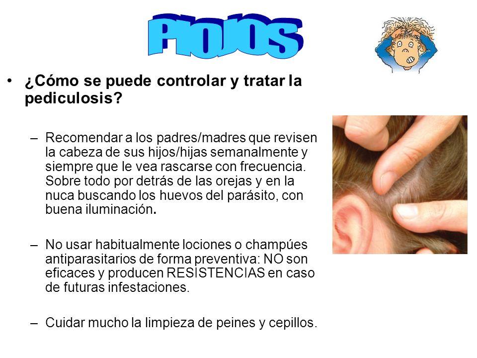 ¿Cómo se puede controlar y tratar la pediculosis? –Recomendar a los padres/madres que revisen la cabeza de sus hijos/hijas semanalmente y siempre que