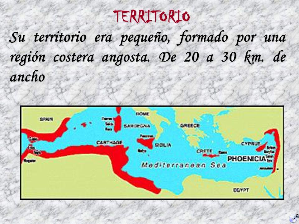 LOS FENICIOS Aproximadamente por el año 3000 A. de C. varias tribus de cananeos, de origen semita, se establecieron en el territorio territorio donde