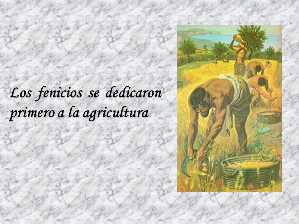 Donde se hacía posible el cultivo de plantas y la crianza de animales Así como, a la explotación de bosques de cedros ACTIVIDADES PRODUCTIVAS