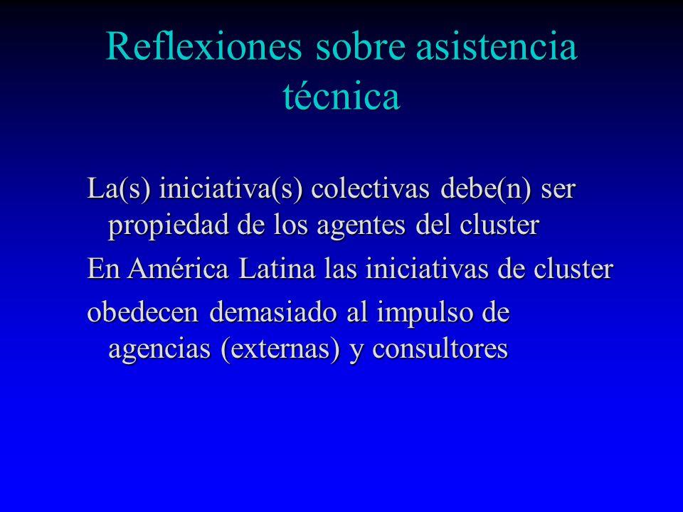 Reflexiones sobre asistencia técnica La(s) iniciativa(s) colectivas debe(n) ser propiedad de los agentes del cluster En América Latina las iniciativas