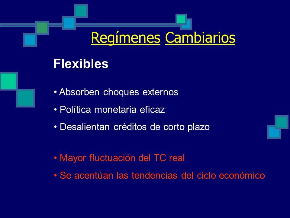 Dolarización : El caso ecuatoriano Resultados Inflación: Año 2002 : 12% Año 2003 : 8% (meta del BCE) Tasa de interés: fluctua entre 16% y 20% PIB: rec