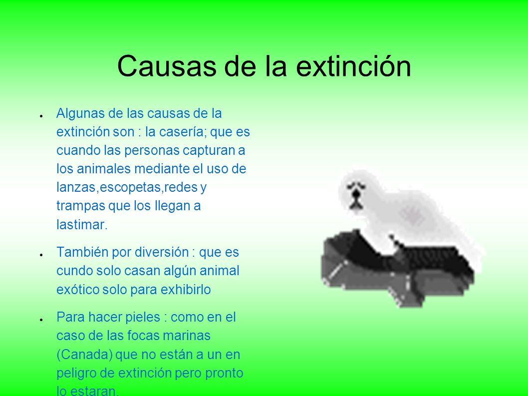 Datos Maria del Rosario Juárez Abad David Roberto Hernandez Velasquez 2 C Animales en peligro de extinción Verónica Gómez Carreón Geografía