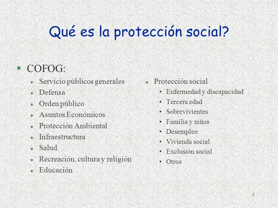 4 Qué es la protección social.