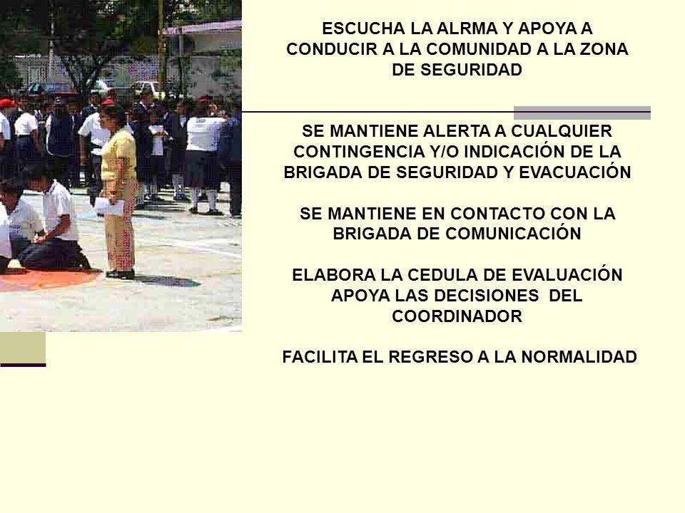 HERLINDA HERNÁNDEZ MAESTRA DE APOYO COORDINADORA DE LAS BRIGADAS DE SEGURIDAD Y SALUD