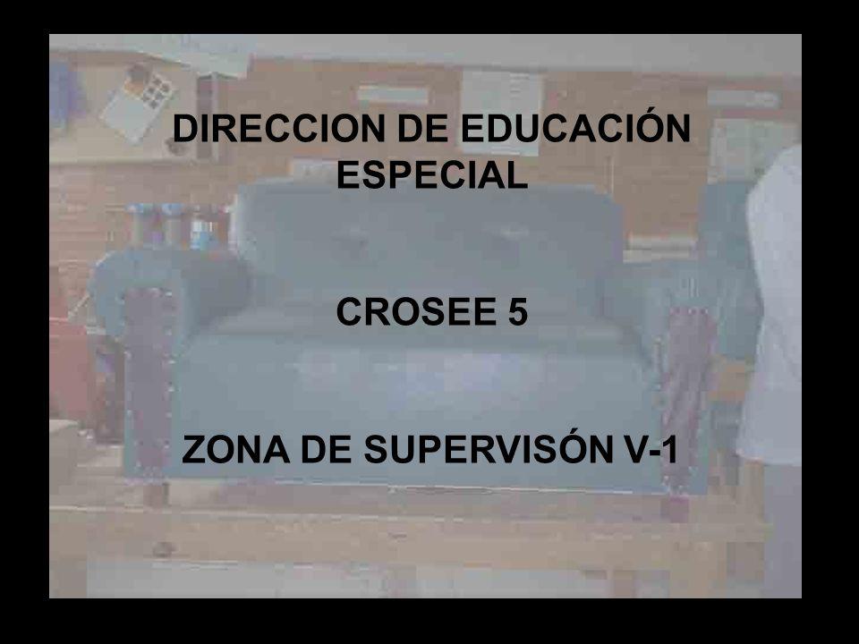 DIRECCION DE EDUCACIÓN ESPECIAL CROSEE 5 ZONA DE SUPERVISÓN V-1