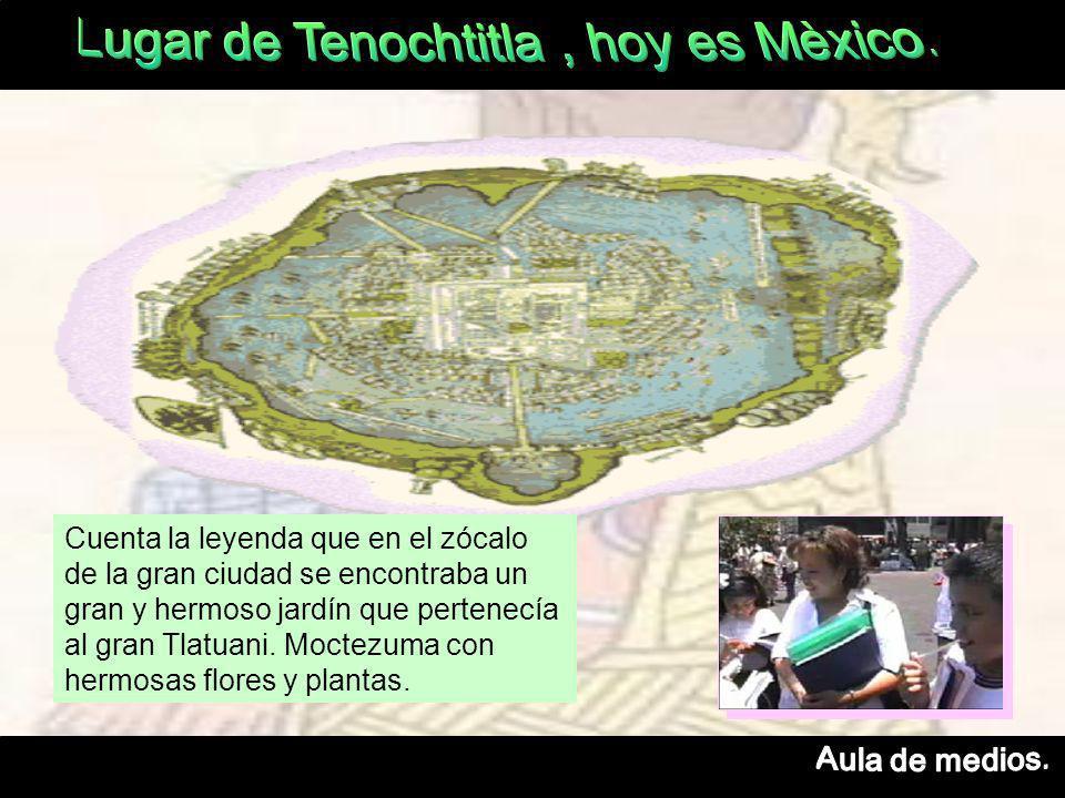 Cuenta la leyenda que en el zócalo de la gran ciudad se encontraba un gran y hermoso jardín que pertenecía al gran Tlatuani.