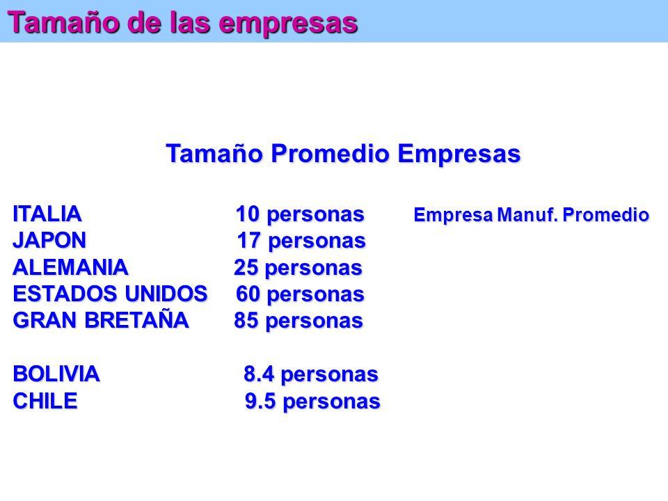 Chile: Cuadro Resumen de Indicadores de Empresas por Tamaños Porcentajes (Promedios de Años 1994/1997) El Universo de las Empresas (2): Chile