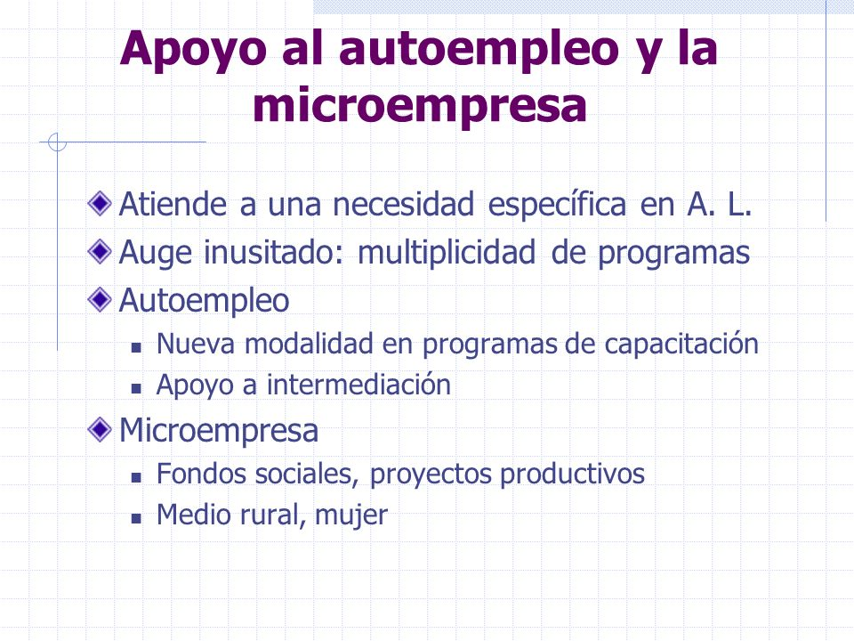 Apoyo al autoempleo y la microempresa Atiende a una necesidad específica en A. L. Auge inusitado: multiplicidad de programas Autoempleo Nueva modalida