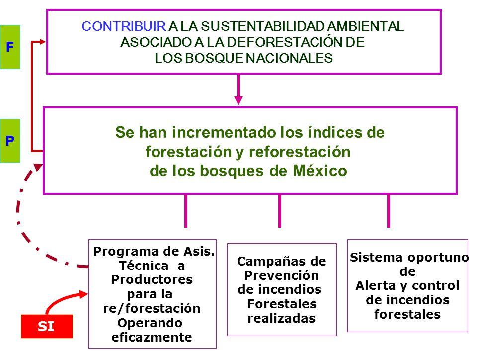 CONTRIBUIR AL DESARROLLO DE LAS CAPACIDADES NUTRICIAS DE LA POBLACIÓN QUE HABITA EN LOCALIDADES RURALES. Localidades rurales entre 200 y 2.500 Habitan