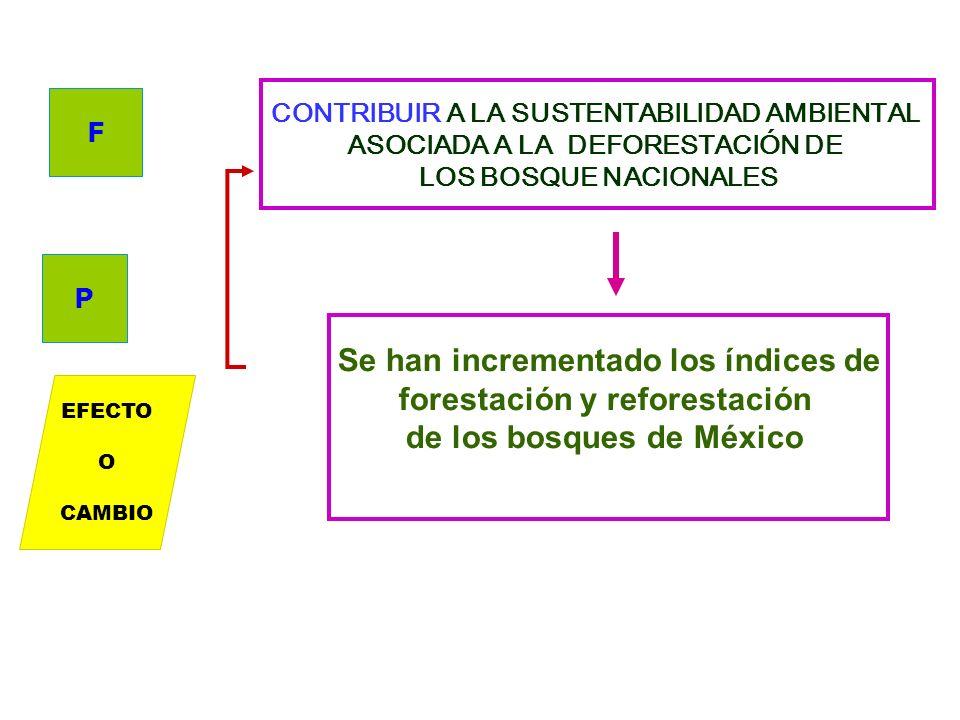 CONTRIBUIR A MEJORAR LA PRODUCTIVIDAD DE LA POBLACIÓN RURAL Y PESQUERA DE LOS ESTADOS XX, YY, TT Productores agropecuarios, pesqueros, acuícolas y rur