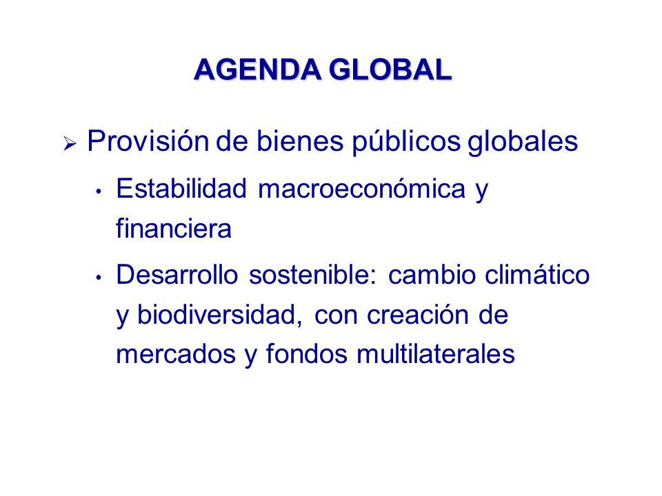 AGENDA GLOBAL Provisión de bienes públicos globales Estabilidad macroeconómica y financiera Desarrollo sostenible: cambio climático y biodiversidad, con creación de mercados y fondos multilaterales
