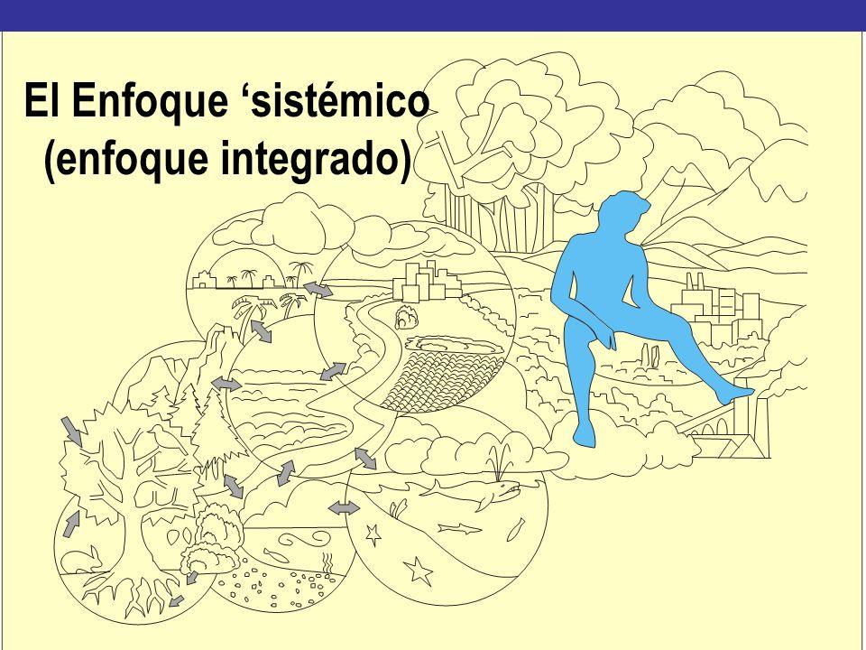 El Enfoque sistémico (enfoque integrado)