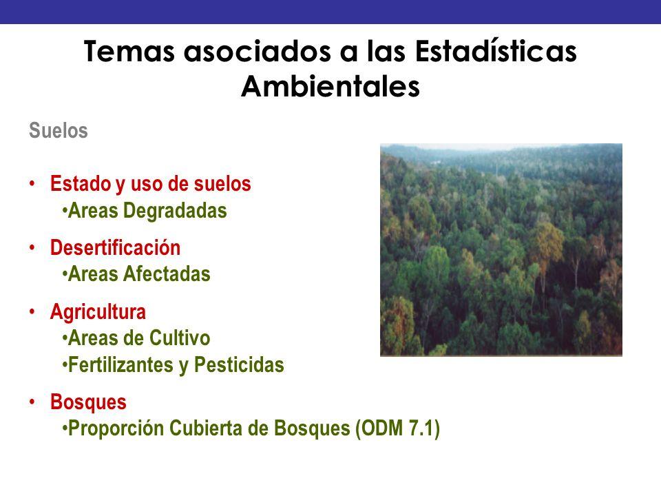 Suelos Estado y uso de suelos Areas Degradadas Desertificación Areas Afectadas Agricultura Areas de Cultivo Fertilizantes y Pesticidas Bosques Proporc