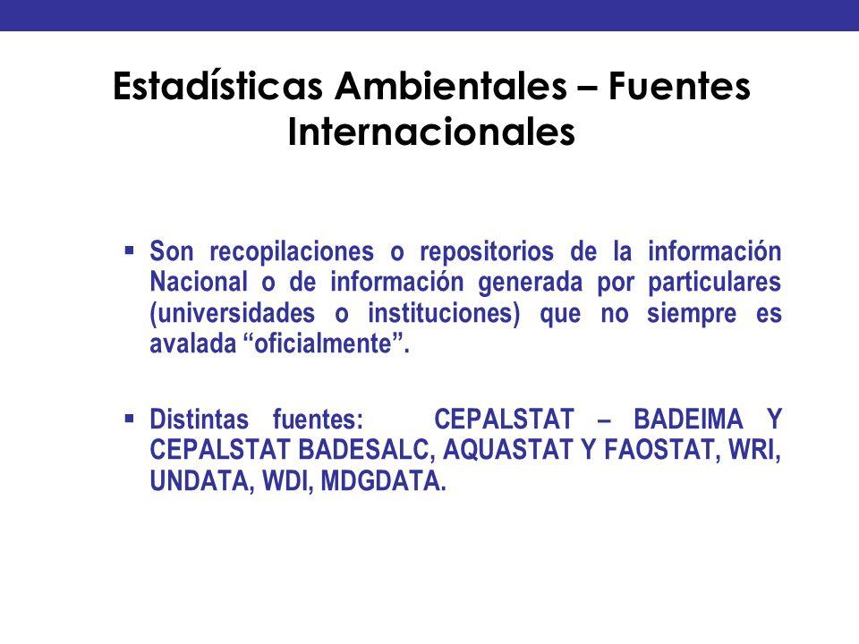 Estadísticas Ambientales – Fuentes Internacionales Son recopilaciones o repositorios de la información Nacional o de información generada por particul